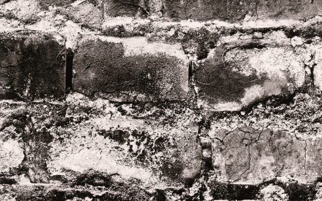 Black and white, Brick Wall, Houston, Texas