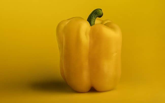 Still Life of Yellow Pepper