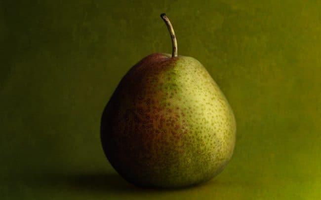 Still Life of Seckel Pear