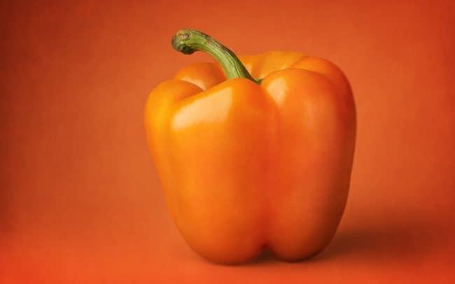 Still Life of Orange Pepper