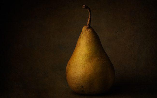 Still Life of Bosc Pear