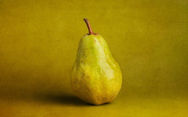 Still Life of Bartlett Pear