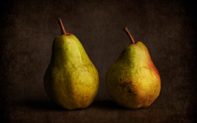 Still Life of Bartlett Pears
